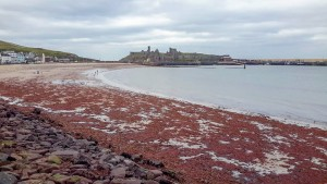 Peel Castle from across the beach
