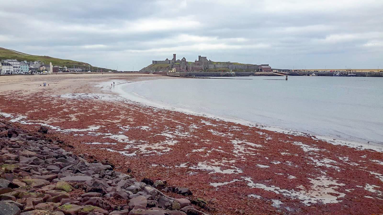Peel Castle from across the beach
